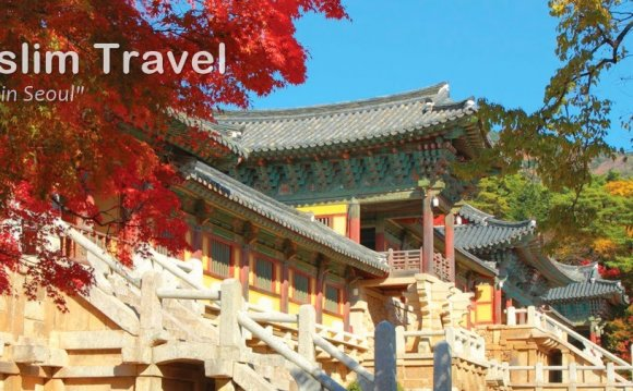 Korea Muslim Travel