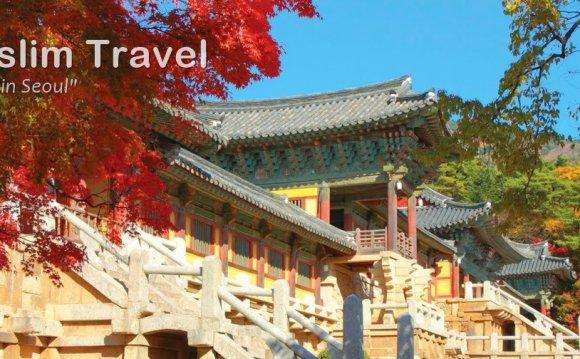 Korea Muslim Travel