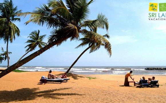 Sri Lanka Travel Operator