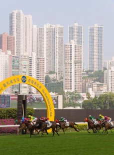 Horses racing at Happy Valley racecourse, Hong Kong