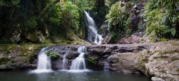South East Queensland: Lamington National Park