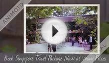 Get best Singapore travel packages with Tripsbank